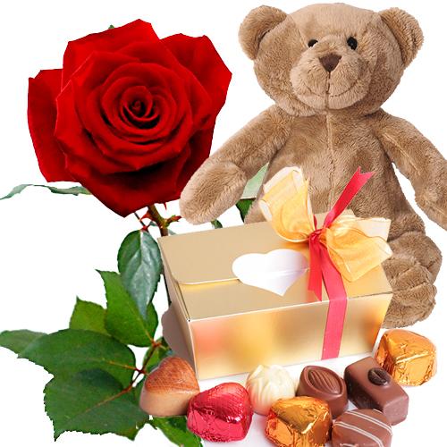 Rode roos met Valentijn chocolade en beer
